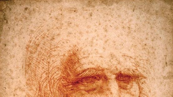 Hay 14 descendientes vivos de Da Vinci y solo uno sabía el parentesco