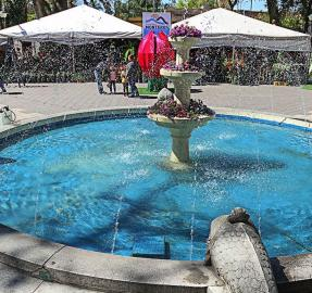 Hasta el domingo se realiza la Fiesta Provincial de la Flor, en Monteros